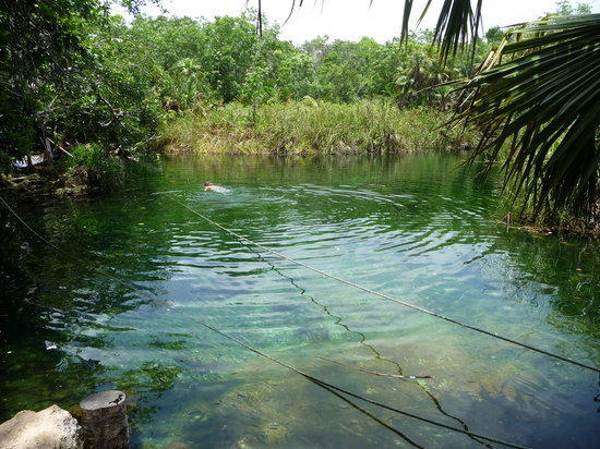 Cenote Crystal Tulum Mexico Address Tickets Amp Tours