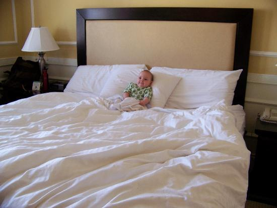 The Pickwick Hotel San Francisco: Cozy bedding