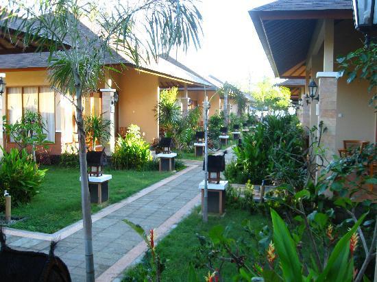 Villa Grasia Resort & Spa: ALLEE