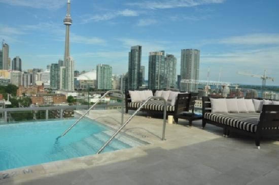 Rooftop Infinity Pool Picture Of Thompson Toronto A Thompson Hotel Toronto Tripadvisor