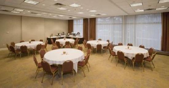 Embassy Suites by Hilton Detroit - Troy/Auburn Hills: Meeting Room