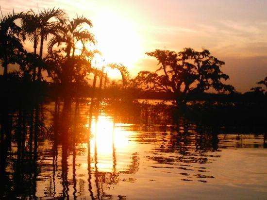 Cuyabeno Wildlife Reserve, Ecuador: cuyabeno sunset