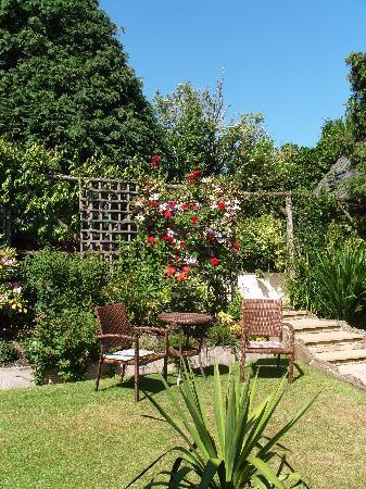Frogwell garden