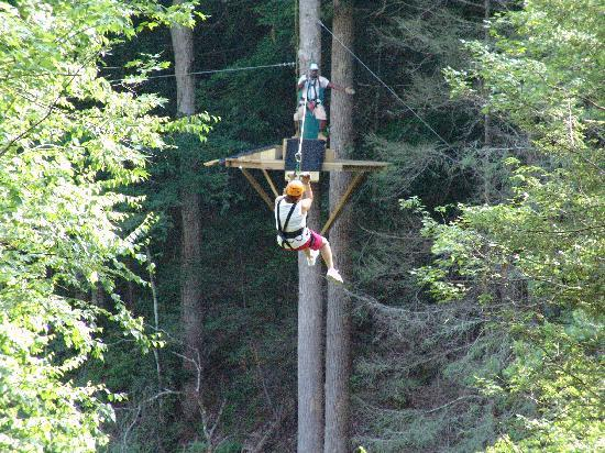 Foxfire Mountain Adventures: Zipping through the treetops