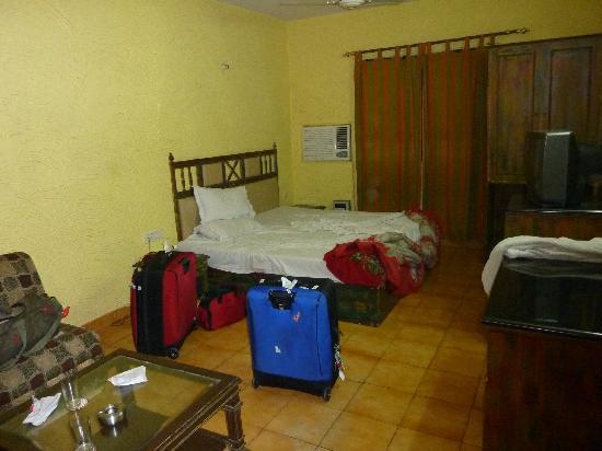 Maurya Heritage Hotel: Room