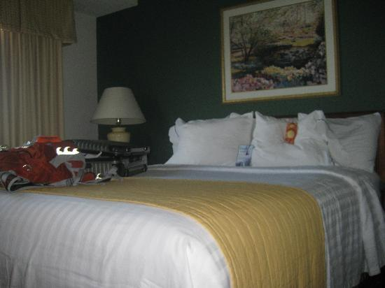 Residence Inn Austin South: Comfy bed