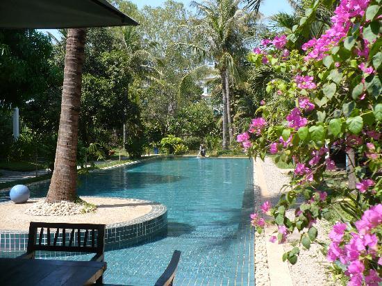La Maison d'Angkor: Pscinna - Jardin