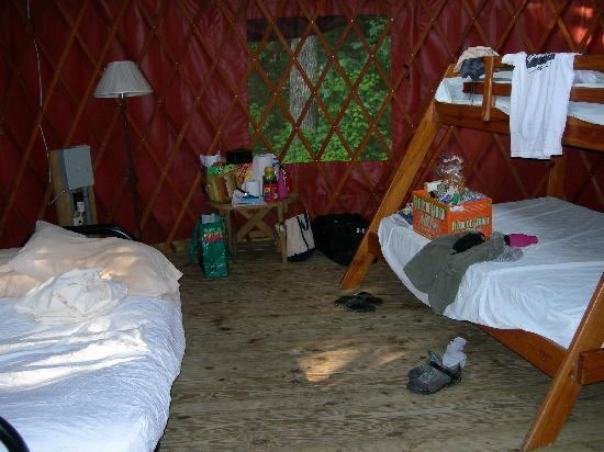 Trap Pond State Park : Inside of Yurt#1