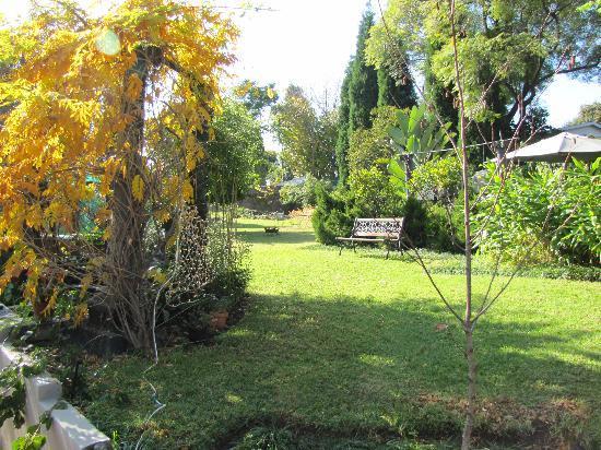 Craighall Garden Guest House: Garden Area