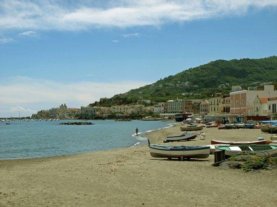 Continental Mare Hotel: Ischia Ponte