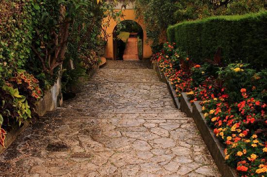 Le jardin de la villa ephrussi de rotschild picture of for Les jardins de villa paris