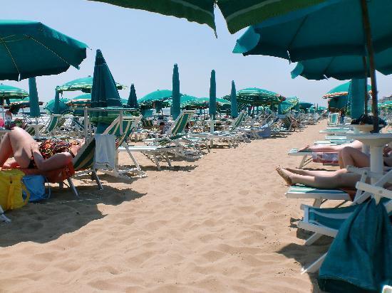 Hotel International: Liegen am Strand