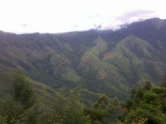The Whispering Meadows Munnar: view from hotel