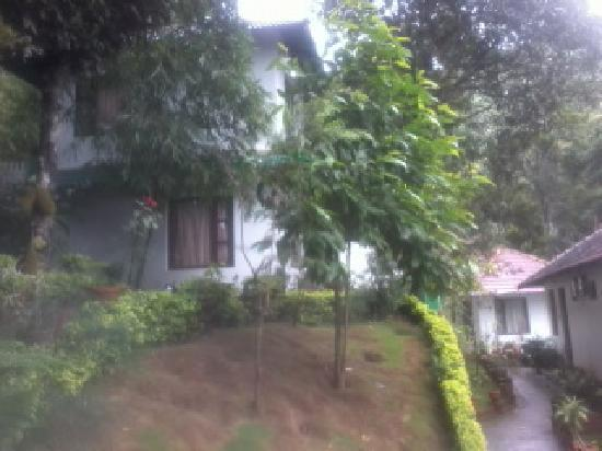The Whispering Meadows Munnar: the way to cottage