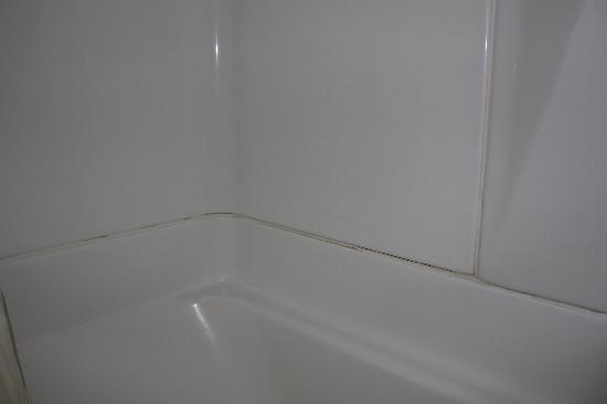 YMCA of the Rockies: Dunraven cabin bathtub