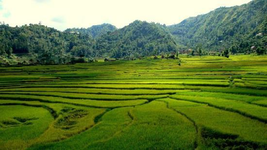 Balthali Nepal  City new picture : Landscape near Balthali Picture of Kathmandu, Kathmandu Valley ...