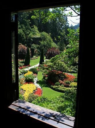 Butchart Gardens: The Butchard Gardens