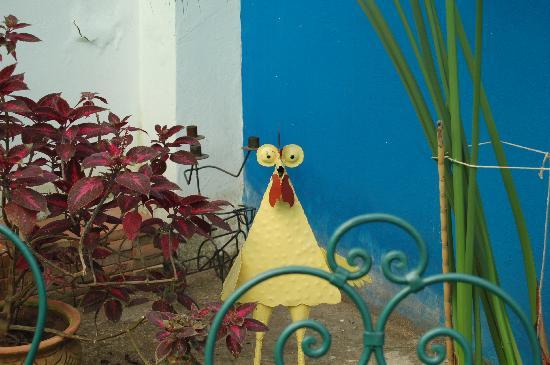 Dar Byeda: Le coq du jardin