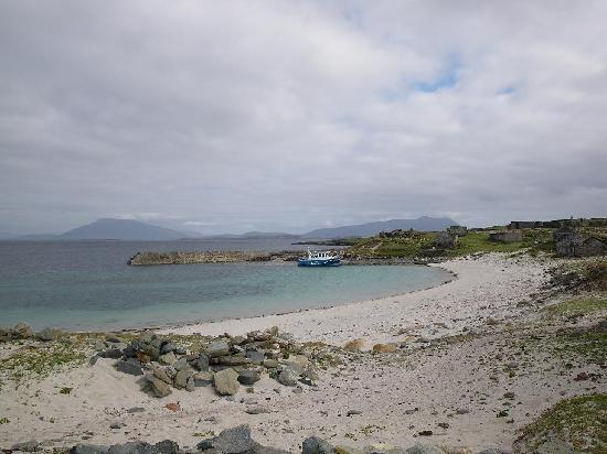 Dulra Nature Tours: Tours of the Iniskea Islands, West Coast of Ireland