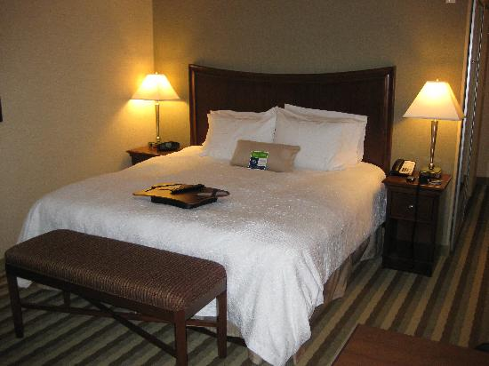 Hampton Inn Presque Isle: King bed
