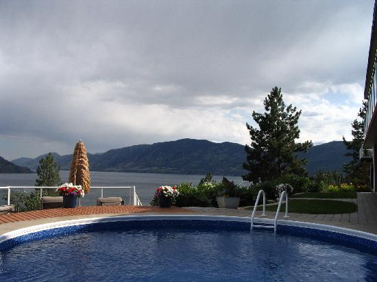 Okanagan Oasis B&B: The pool, the view and the lawn in front of the rooms.