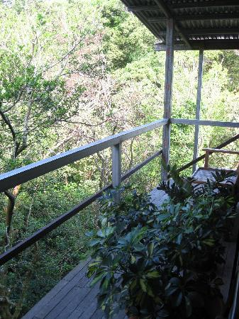 Manakin Lodge Monteverde : Backyard balcony
