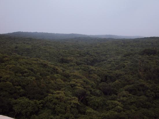 The Fern Surya Resort, Mahabaleshwar: View from Galary
