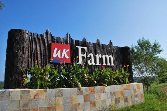 Photo of UK Agro Resort Kluang
