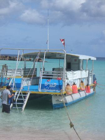 Barbados Blue: The Boat