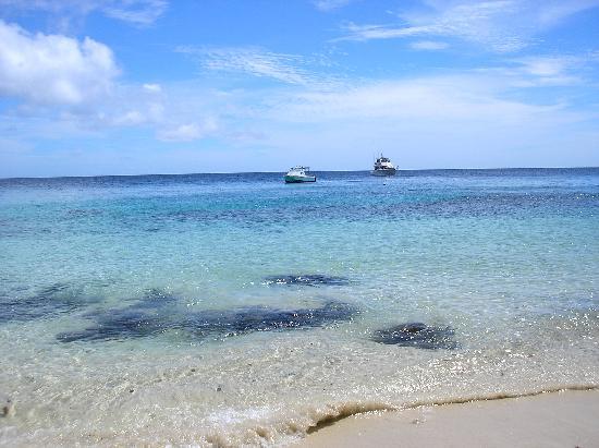 Royal Davui Island Resort: georgious beach