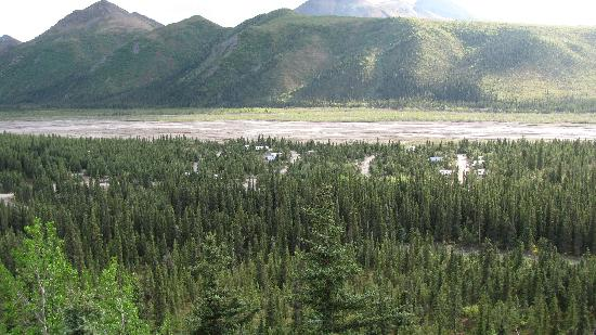 Teklanika River: campground from bluff
