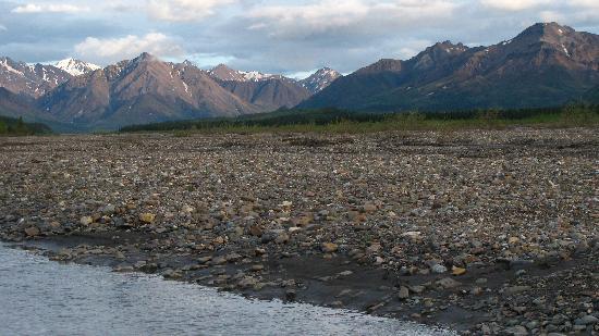 Teklanika River : riverbed
