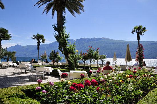 Hotel Villa Giulia: rose garden and terrace