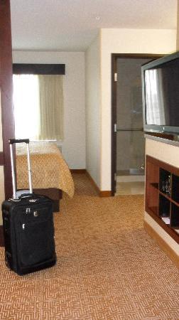 Hyatt Place South Bend/Mishawaka: from the couch area toward the bed & bathroom area