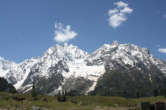 Sonmarg 사진