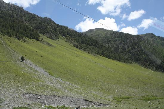 Sonmarg, Indien: Awesome meadows