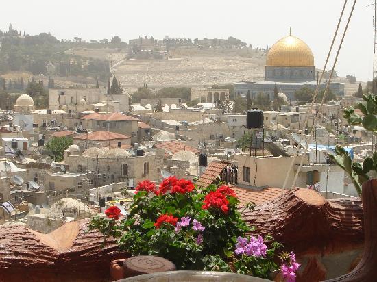Hashimi Hotel: Blick von der Terasse