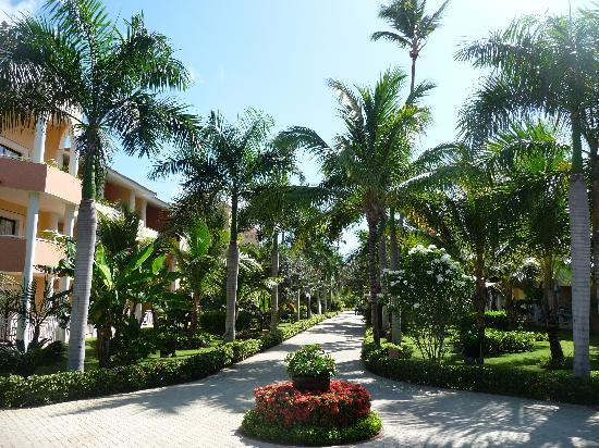 Luxury Bahia Principe Ambar Blue Don Pablo Collection: Ambar Grounds