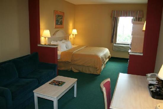 Comfort Suites at the University: Standard King Room