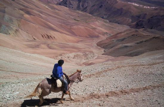 Trekking Travel Expediciones - Day Tours : Cruce de Los Andes a Caballo