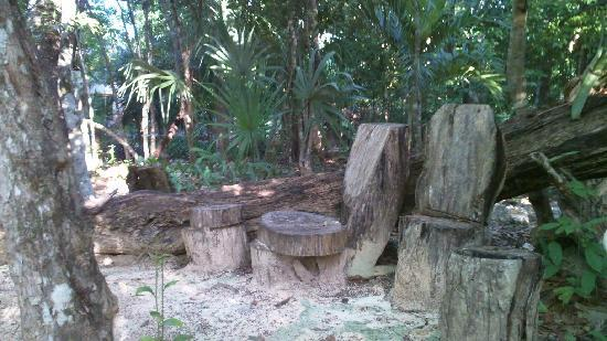 Handmade chairs on one of the paths in La Selva Mariposa