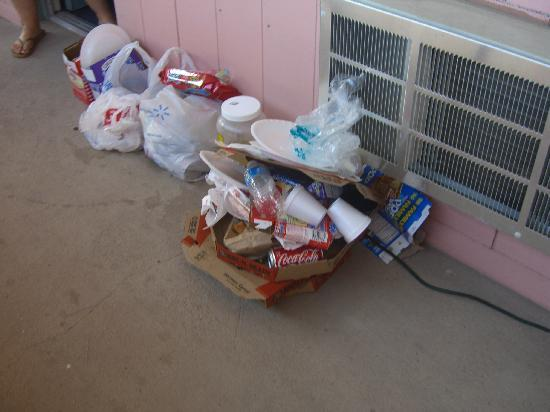 Carlsbad, NM: Trash stayed out for 2 days.