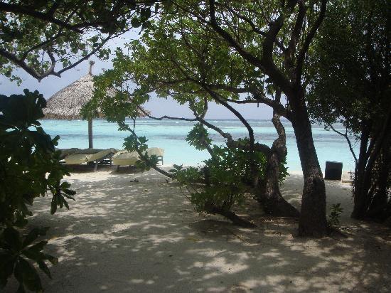 Four Seasons Resort Maldives at Kuda Huraa: view of beach from plunge pool