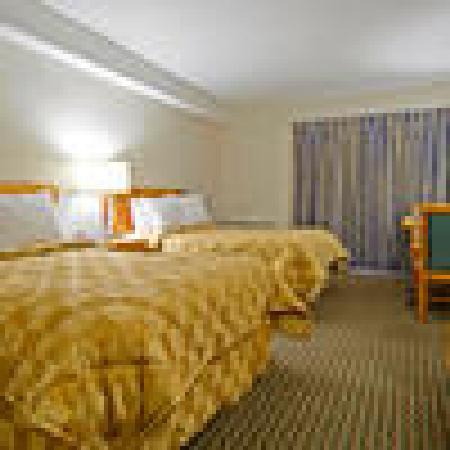 Comfort Inn: 2 Double beds with refrig & driveup access