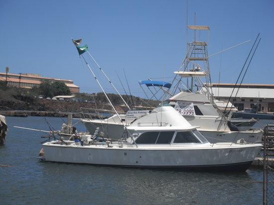 Deep Sea Fishing Kauai: The Big Ta Do