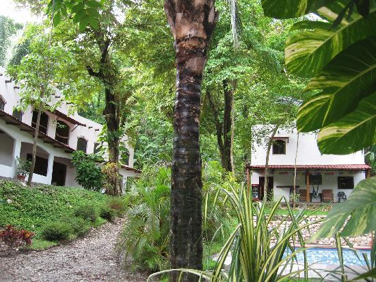 Cuesta Arriba Hotel: Surrounded by tropical trees and a lush garden