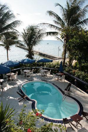 Blue Tang Inn: The incredibly clean pool