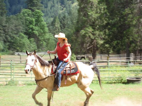Coffee Creek Ranch : In the ring