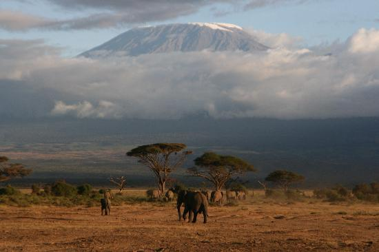 Amboseli Serena Safari Lodge: View of Mt. Kilimanjaro