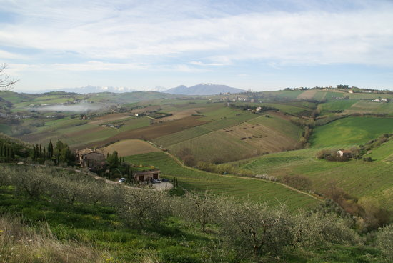Cossignano, Italia: wunderschöne Lage